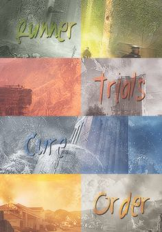 The Maze Runner Series by James Dashner. EVERYBODY should read these amazing books.