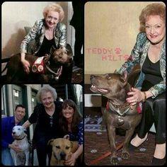 Betty White,  not afraid of pit bulls