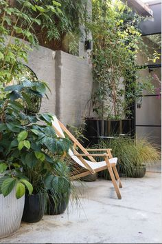2057 best jardin images in 2019 backyard patio garden modern rh pinterest com