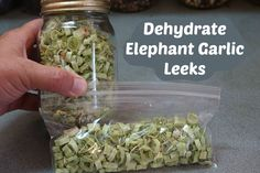 How to dehydrate elephant garlic leeks