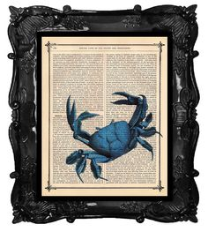 Blue crab art.