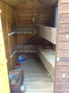 Could have guinea pigs above the rabbits haha! Inside the guinea pig shed Guinea Pig Run, Diy Guinea Pig Cage, Guinea Pig Hutch, Guinea Pig House, Bunny Hutch, Bunny Sheds, Rabbit Shed, Rabbit Run, House Rabbit