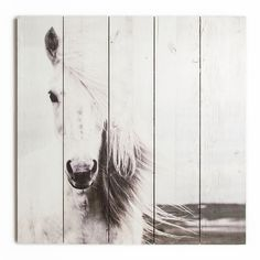 Horse Print On Wood Wall Art