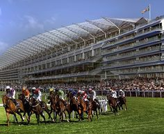 Our chauffeur service will ensure you arrive in style at the Royal Ascot meeting. Book a chauffeur driven luxury vehicle and enjoy our unparalleled customer experience. Royal Ascot, Prince Harry And Meghan, Duke And Duchess, Meghan Markle, Dolores Park, Culture, London, Flat, Sports