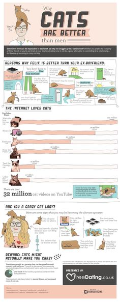 Internet loves cats, no explanation needed. Check out this infographic on why your feline friends are better than men.The Internet loves cats, no explanation needed. Check out this infographic on why your feline friends are better than men. Crazy Cat Lady, Crazy Cats, Cute Cats, Funny Cats, Cat Info, Cat Behavior, All About Cats, Cat Facts, Cats And Kittens