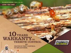 Protech pest control provides termites control service in commercial & residential area. Call us on 1300 486 149.