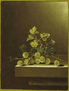 Spray of Green Gooseberries on a Stone Plinth Date1705Mediumoil on canvasDimensions31 x 23.5 cmCurrent locationPrivate collectionInscriptionsA, Coorte, / i705