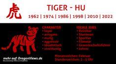 Chinesische Tierkreiszeichen: Tiger - Fakten | © premiumdesign - fotolia.com / DragonViews