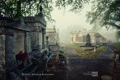 Masonic Cemetery New Orleans