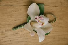 Boutonniere de orquidea blanca