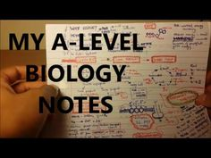 These are my A level Biology notes. For chemistry, economics, UKCAT, Personal Statement, Interview and med school advice and tips check my channel out! Greys Anatomy Book, Anatomy Flashcards, A Level Biology, Med School, Medical School, Economics, Notes, Report Cards, Notebook
