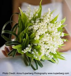 Love Lilly of the Valley. I think a mix of them and baby's breath for the centerpieces would be beautiful