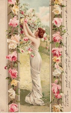 ART PRETTY LADY picking ROSES from TREE 1901 postcard