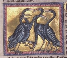 """The Aberdeen Bestiary-f45v Text: """"Cranes fly high and in flocks. They look after each other if one tires in flight."""" In fact they cannot support one another in the air but the V flight formation is aerodynamically effective. Illustration: the illustration refers to the text on f46. Cranes keep watch in turn at night, holding a pebble in their claw to ward off sleep. This is not true."""