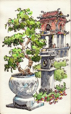 JR Sketches: Bonsai Tree in the Temple of Literature, Hanoi
