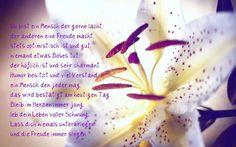 Alles Gute zum Geburtstag - http://www.1pic4u.com/1pic4u/alles-gute-zum-geburtstag/alles-gute-zum-geburtstag-156/