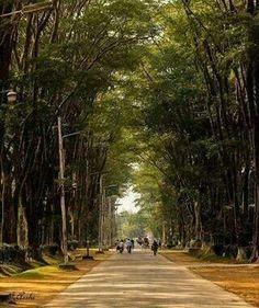 Paris road,  Rajshahi, Bangladesh♡♥