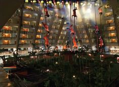 "Inside the Grand Oasis Cancun Hotel enjoy the amazing ""Birdman"" show in the Atrium nightly."