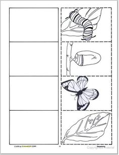 Science Worksheets Kindergarten Life Cycles 29 New Ideas Kindergarten Science, Kindergarten Worksheets, Preschool Activities, Science Worksheets, Worksheets For Kids, Chenille Affamée, Butterfly Metamorphosis, Butterfly Life Cycle, Butterfly Art