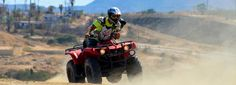 Atv Riding, Adventure Tours, Road Runner, Tour Guide, Cabo, Offroad, Runners, Beach, Hallways