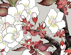 """Check out new work on my @Behance portfolio: """"Kwiaty / Flowers / Florial"""" http://be.net/gallery/63668979/Kwiaty-Flowers-Florial"""