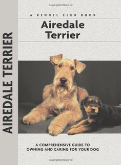 Airedale Terrier (Comprehensive Owner's Guide) by Bardi McLennan http://www.amazon.com/dp/1593782586/ref=cm_sw_r_pi_dp_HBdewb0R9KQ4E