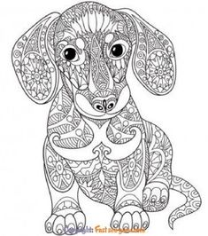 Dog Coloring Page, Printable Adult Coloring Pages, Animal Coloring Pages, Free Coloring Pages, Coloring Books, Coloring Sheets, Mandalas Painting, Mandalas Drawing, Mandala Coloring Pages