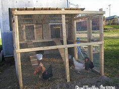 Poulailler d'été et d'hiver Isolé - Idée de construction d'un Poulailler au jardin idées DIY,plans,poulailler,projet DIY,faire son poulailler