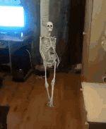 "prguitarman: ""docile-potato: ""Everyone who reblogs this will get a skeleton joke in their inbox "" The Skeleton War sends a messenger "" Crazy skeleton !…"