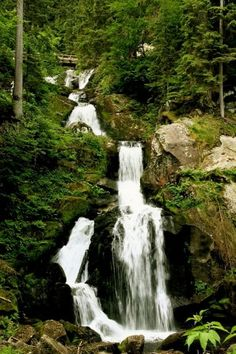 Triberg, Germany. Waterfalls and cuckoo clocks. Would love to go back to the Black Forest!!
