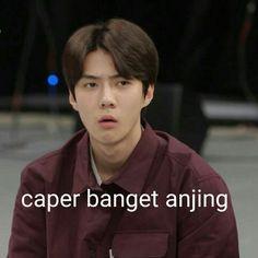 Memes Funny Faces, Funny Kpop Memes, Exo Memes, Cute Memes, Exo Stickers, Funny Instagram Captions, Sehun Cute, K Meme, Korean Drama Quotes