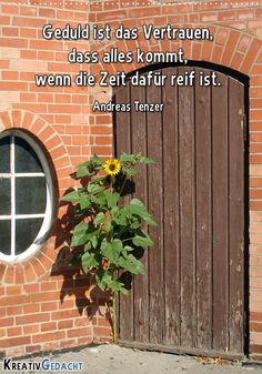 Geduld ist das Vertrauen, dass alles kommt, wenn die Zeit dafür reif ist. Andreas Tenzer