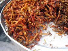 Fieggentrio: Waarom willen wij geen insecten eten?