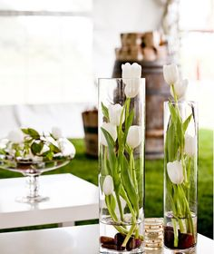 spring-like decoration-for-the-table white-tulips glass vase .- frühlingshafte dekoration-für den-tisch weiße-tulpen Glasvase spring decoration – for the table white tulips glass vase - Tulpen Arrangements, Floral Arrangements, Table Arrangements, Deco Floral, Floral Design, Vase Haut, Wedding Centerpieces, Wedding Decorations, Simple Centerpieces