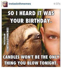 sloths are so creepy