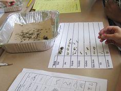 Teaching My Friends!: Science