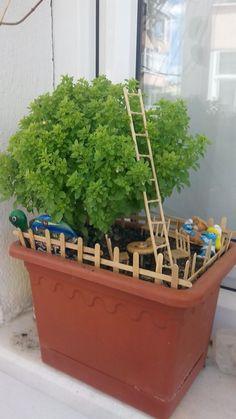 Minyatür bahçe Green Farm, Terrarium Plants, Fairy Land, Fairy Houses, Planter Pots, Fairies Garden, Ideas, Fairy Gardening, Gardens
