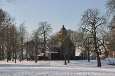 Rotterdam covered in snow.