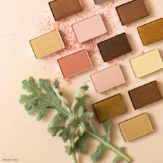 Eye shadows can be used for so many things! Highlighters, eye brows, and more!