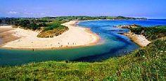 ECO-DIARIO-ALTERNATIVO: Cantabria: Denuncia a la Fiscalía sobre los Parques naturales de Oyambre y Saja-Besaya