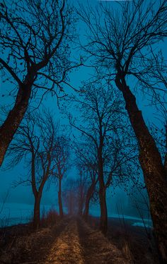 ~~The turquoise hour • Oslo, Norway by Tore Thiis Fjeld~~