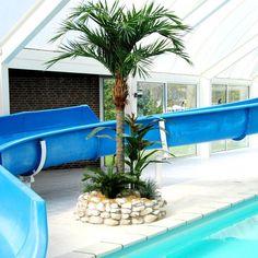 De meest natuurgetrouwe kunstpalmen voor in uw zwembad! Bel voor een gratis beplantingsadvies met Maxifleur Kunstplanten