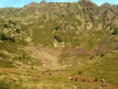 Comapedrosa, el sostre d'Andorra   A un tir de pedra