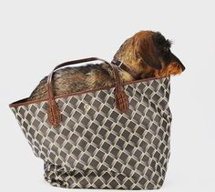 New Tote bag brand with prints and monogram, Lonbali. Dog in a bag.