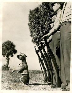 "A dog's life in the U. Marine Corps isn't all soup bones and dog biscuits. It means going through drill and standing attention. Here is private ""Screwball"" bull terrier mascot of the Marine detachment at Dunedin, FLA., taking command. Military Working Dogs, Military Dogs, Police Dogs, Military Service, War Dogs, Pit Bull Love, Vintage Dog, Service Dogs, Pitbull Terrier"