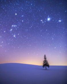 . 魔法の時間〜天の宝石散りばめて。 . . 時に寒さも忘れる絶景と出逢う。 . . こんな景色を見るために この星に生まれて来たんだろう。 . ほんとにそう思えてしまうほど。 . . まだ知らない景色はたくさんある。 . 色んな期待を胸に、今日も明日も頑張ろう。 . . Hokkaido,Japan. . . . . . . . #日本の絶景#北海道#星空#満天の星空#オリオン座#一本木#美瑛#クリスマスツリーの木#japan#sightseeing#japantravel#traveljapan#starlitsky#longexposure#長時間露光#aroundtheworld#47都道府県制覇#絶景#雪景色#christmastree#biei#hokkaido#picture_to_keep#カメラ男子#一眼レフ#キャノン#東京カメラ部#ファインダー越しの私の世界#カメラ好きな人と繋がりたい#写真撮ってる人と繋がりたい