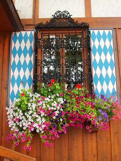 Window at the Bavarian Inn Restaurant, Frankenmuth, Michigan Window Box Flowers, Window Boxes, Flower Boxes, Frankenmuth Michigan, Garden Windows, Christmas Wonderland, Thinking Day, Window View, Container Flowers