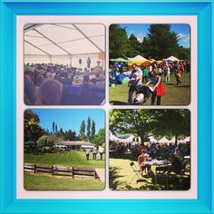 Some snapshots from a delightful day at the Culverden Fete, an hour from Christchurch NZ, where I was the guest speaker. Over 6000 people came for a gorgeous day out and the sun shone. Mark it in your calendar for next year! Thanks to everyone for such a great day!