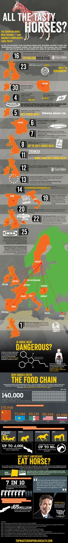 The European Horse Meat Scandal Explained (Infographic)