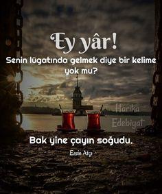 Karma, Tea, Quotes, Istanbul, Wallpaper, Live, High Tea, Qoutes, Wallpaper Desktop